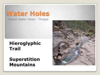 Water Holes