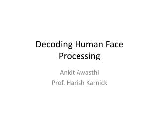 Decoding Human Face Processing