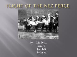 Flight of the Nez Perce