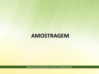 AMOSTRAGEM