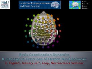 Brain Coordination Dynamics