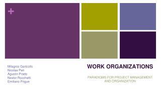 WORK ORGANIZATIONS