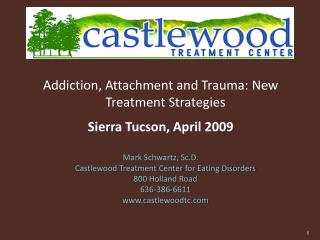 Addiction, Attachment and Trauma: New Treatment Strategies  Sierra Tucson, April 2009   Mark Schwartz, Sc.D.  Castlewood