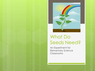 What Do Seeds Need?