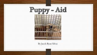 Puppy - Aid