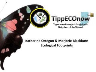 TippECOnow