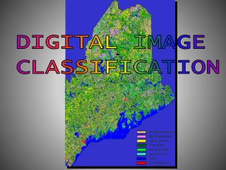 DIGITAL IMAGE  CLASSIFICATION