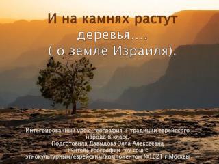 И на камнях растут  деревья….  ( о земле Израиля).
