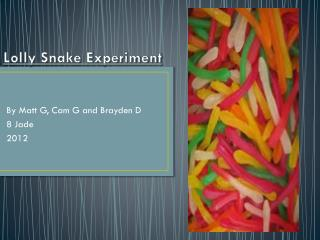 Lolly Snake Experiment