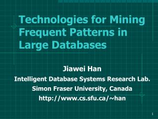 Technologies for Mining Frequent Patterns in Large Databases