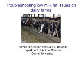 Troubleshooting low milk fat issues on  dairy farms