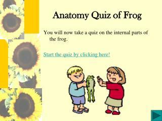 Anatomy Quiz of Frog