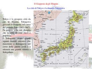 Il Giappone degli Shogun
