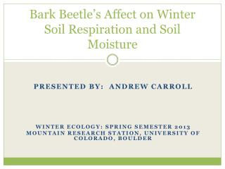 Bark Beetle's Affect on Winter Soil Respiration and Soil Moisture