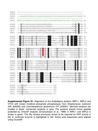 Supplemental Figure S2.  pGenTHREADER  alignment used to generate homology model of  IMPL2.