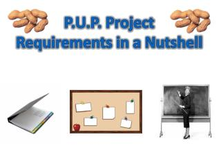 P.U.P. Project Requirements in a Nutshell