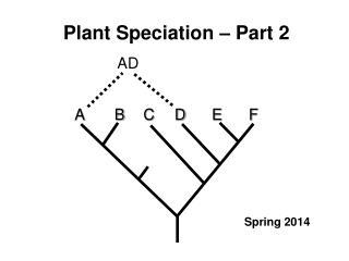 Plant Speciation – Part 2