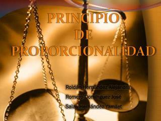 PRINCIPIO  DE PROPORCIONALIDAD