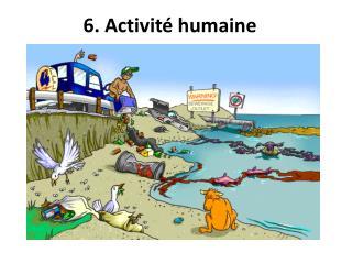 6. Activité humaine