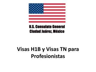 Visas H1B y Visas TN para  Profesionistas