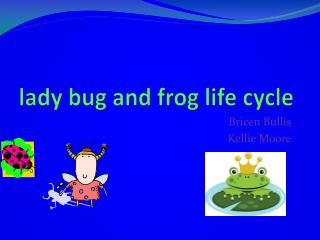 lady  bug and frog life cycle