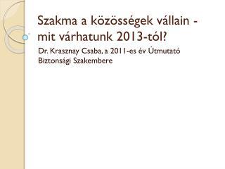Szakma a közösségek vállain - mit várhatunk 2013-tól?