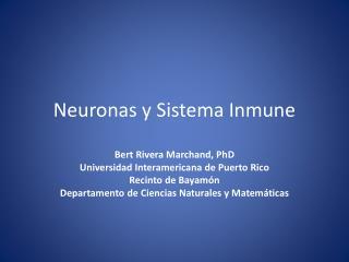 Neuronas y Sistema Inmune