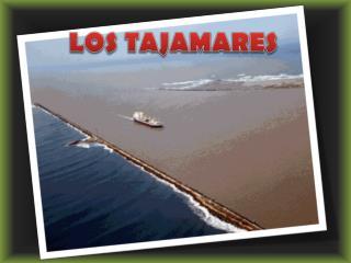 LOS TAJAMARES