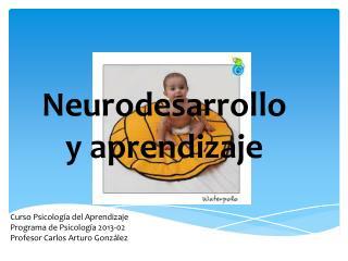 Neurodesarrollo y aprendizaje
