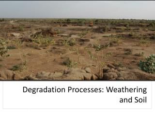 Degradation Processes: Weathering and Soil