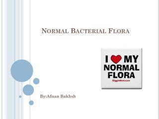 Normal Bacterial Flora