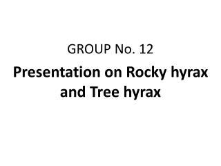 GROUP No. 12 Presentation on Rocky hyrax and Tree hyrax
