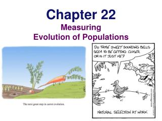Chapter 22 Measuring Evolution of Populations