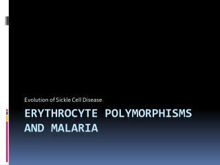Erythrocyte Polymorphisms and malaria