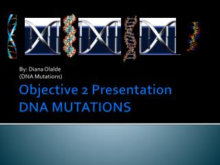 Objective 2 Presentation DNA MUTATIONS