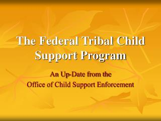 The Federal Tribal Child Support Program