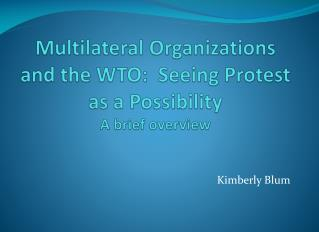 Multilateral Organizations and the WTO:  Seeing Protest as a Possibility A brief overview