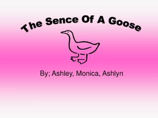 By; Ashley, Monica, Ashlyn