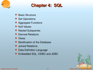 Chapter 4 - Organization and Description of Data