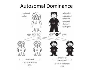 Autosomal Dominance
