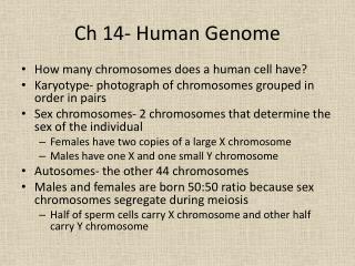 Ch 14- Human Genome