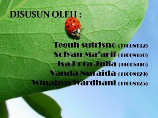DISUSUN OLEH :