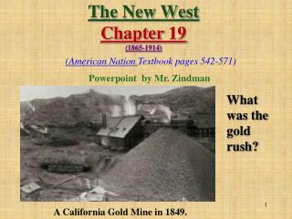 The New West  Chapter 19 1865-1914