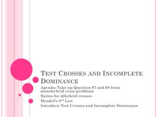 Test Crosses and Incomplete Dominance