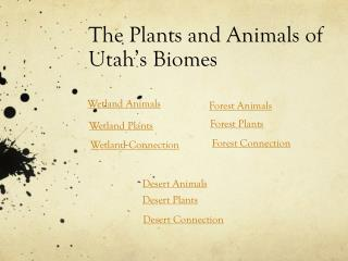 The Plants and Animals of Utah's Biomes
