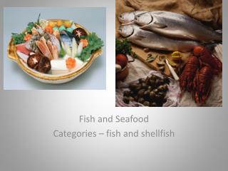Fish and Seafood Categories – fish and shellfish