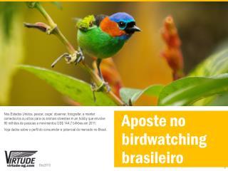 Aposte no  birdwatching brasileiro