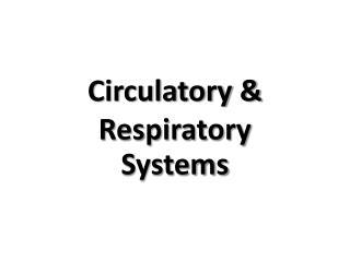 Circulatory & Respiratory