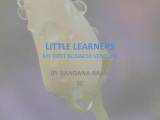 LITTLE LEARNERS MY FIRST BUSINESS VENTURE