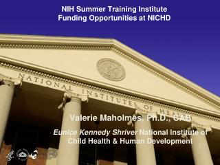 NIH Summer Training Institute Funding Opportunities at NICHD